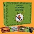 Ptasi śpiew, bez podkładu muzycznego- 4CD