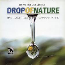 Odgłosy deszczu i lasu – Drop Of Nature